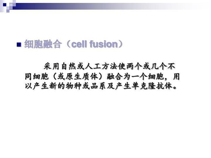 细胞融合(