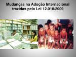 mudan as na ado o internacional trazidas pela lei 12 010 2009