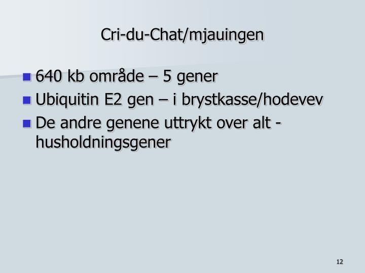 Cri-du-Chat/mjauingen