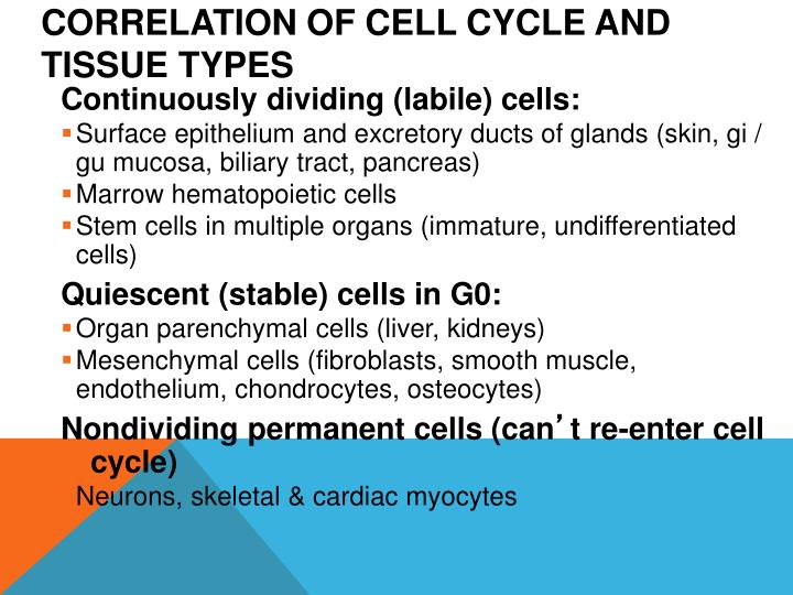 Correlation of Cell Cycle and Tissue Types