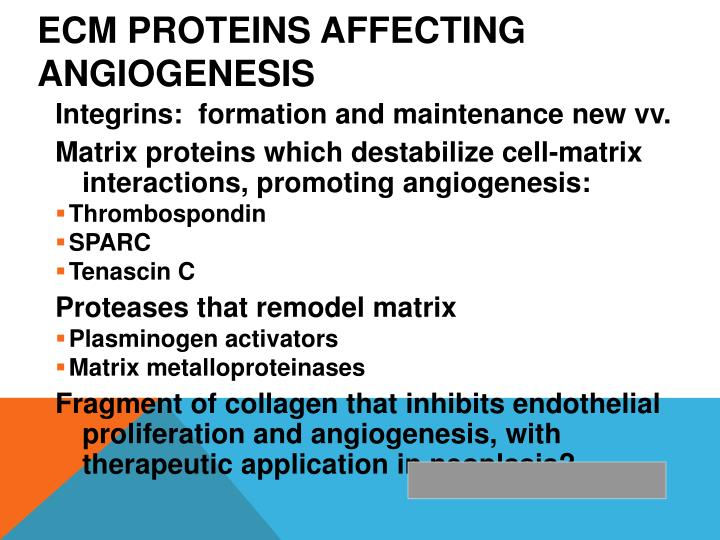 ECM proteins affecting angiogenesis