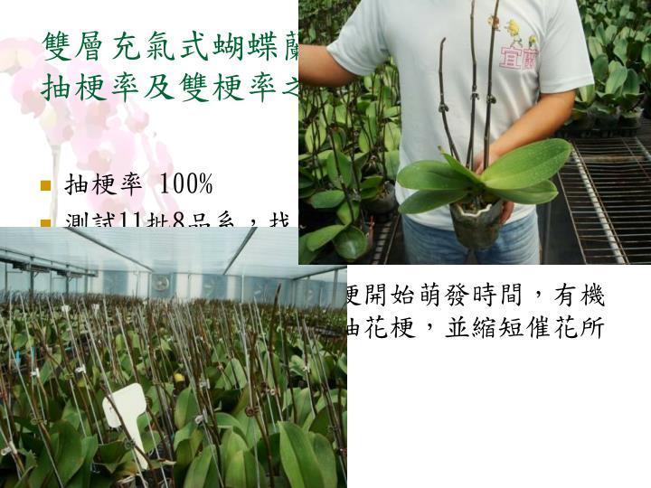 雙層充氣式蝴蝶蘭催花溫室