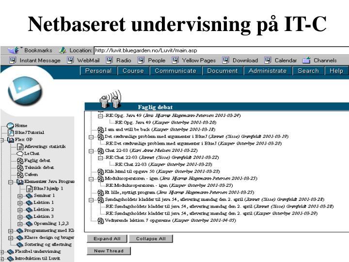 Netbaseret undervisning på IT-C