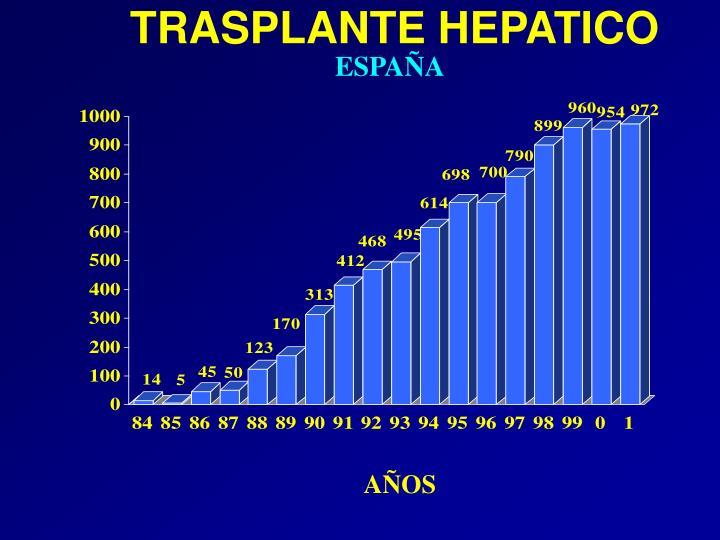 TRASPLANTE HEPATICO