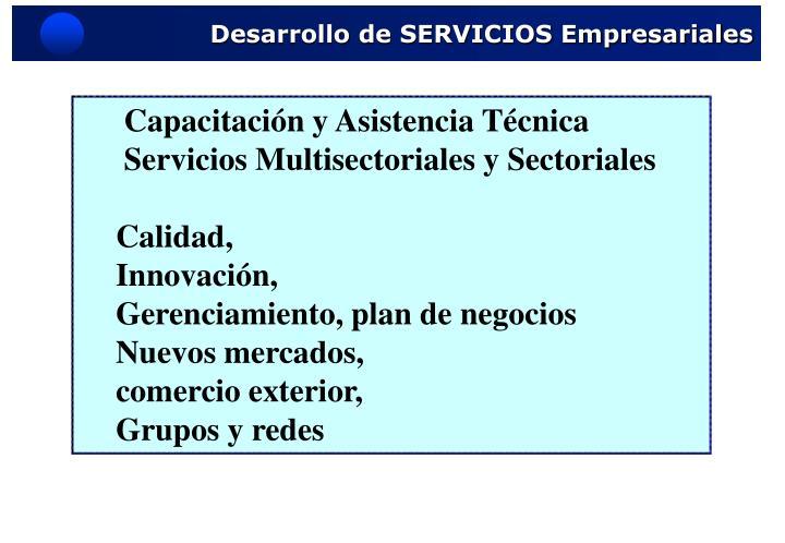 Desarrollo de SERVICIOS Empresariales