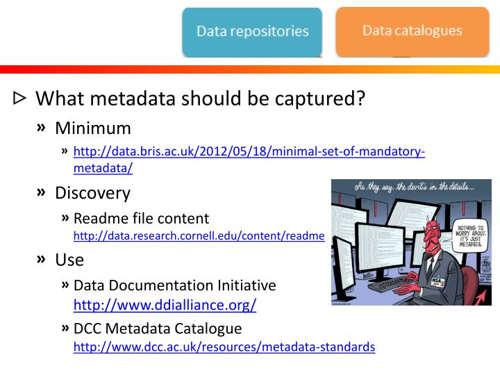 What metadata should be captured?