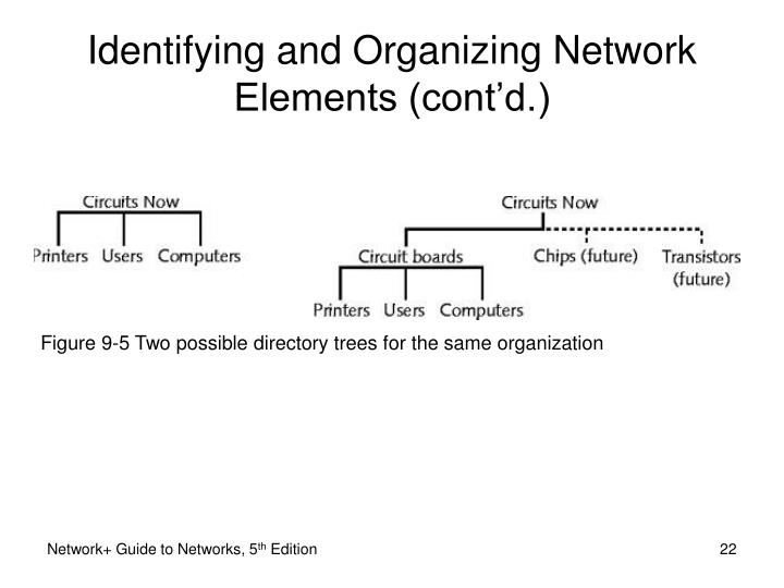 Figure 9-5 Two possible directory trees for the same organization