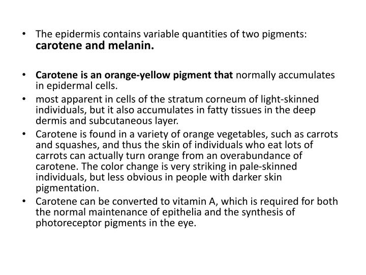 The epidermis contains variable quantities of two pigments: