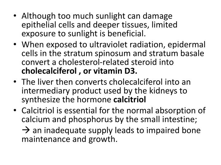 Although too much sunlight can damage epithelial cells and deeper tissues, limited exposure to sunlight is beneficial.