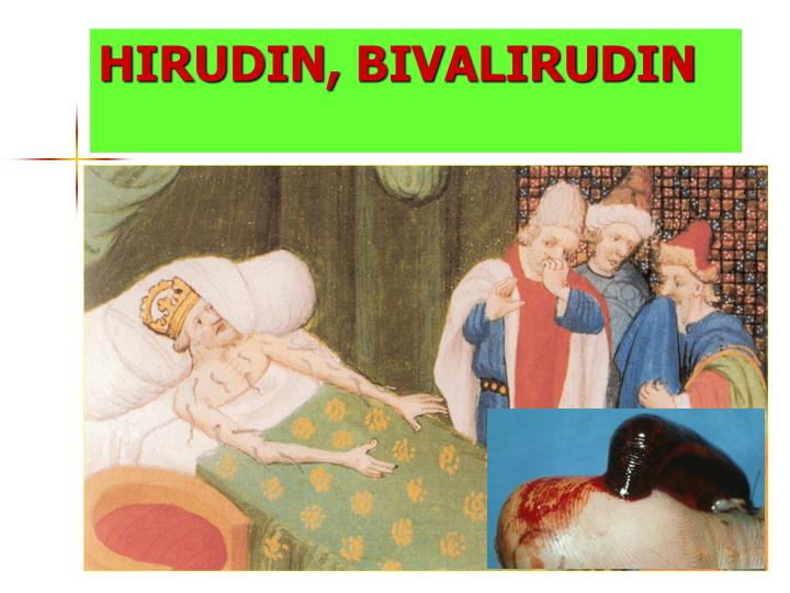 HIRUDIN,