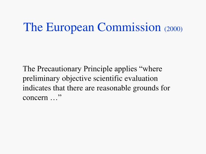 The european commission 2000