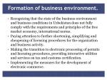 formation of business environment1