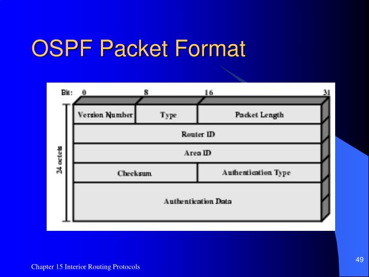 OSPF Packet Format