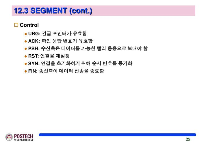 12.3 SEGMENT (cont.)
