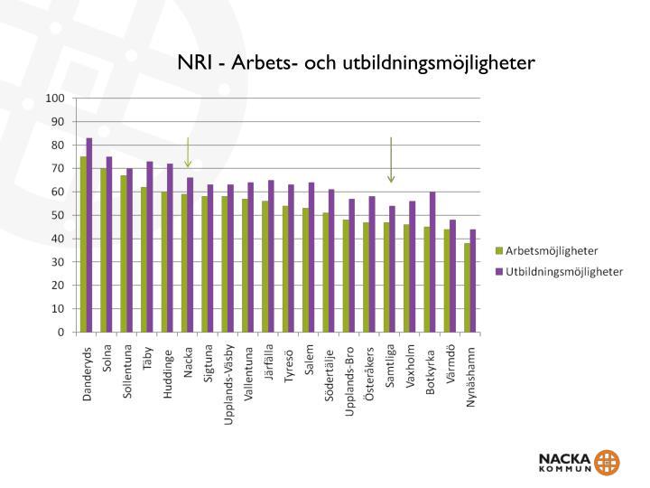 NRI - Arbets- och utbildningsmöjligheter