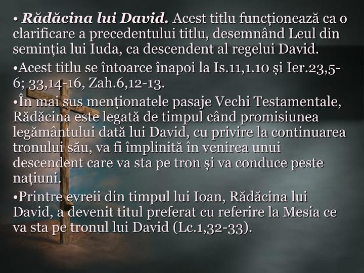 Rădăcina lui David.
