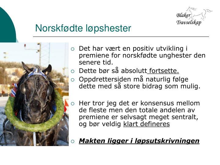 Norskfødte løpshester
