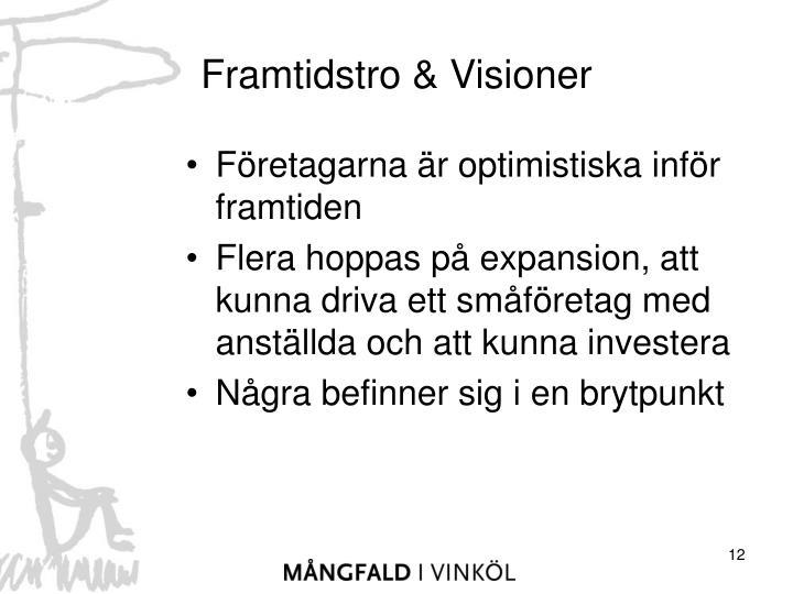 Framtidstro & Visioner