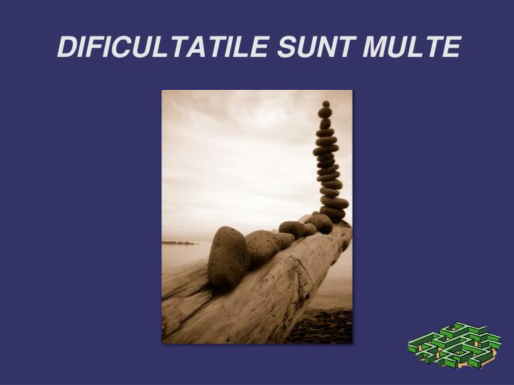 DIFICULTATILE SUNT MULTE