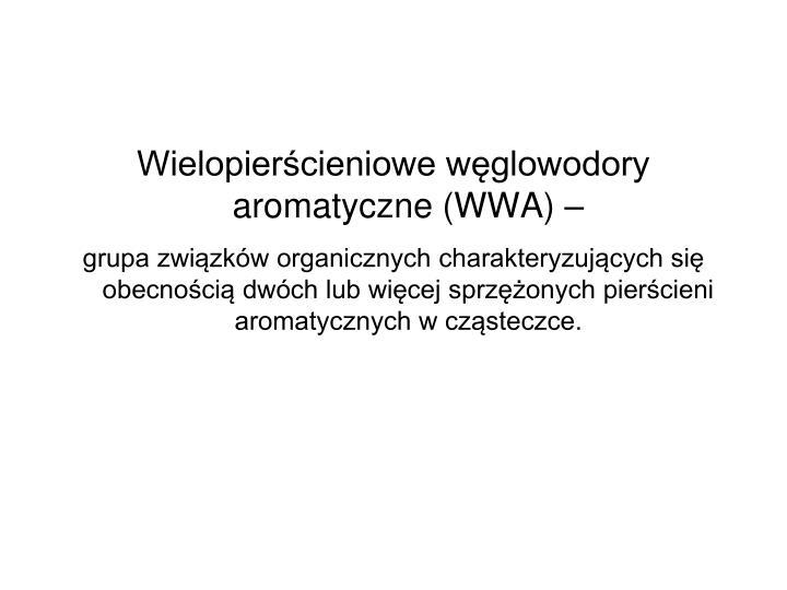 Wielopiercieniowe wglowodory aromatyczne (WWA)