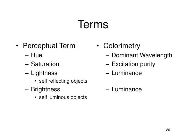 Perceptual Term