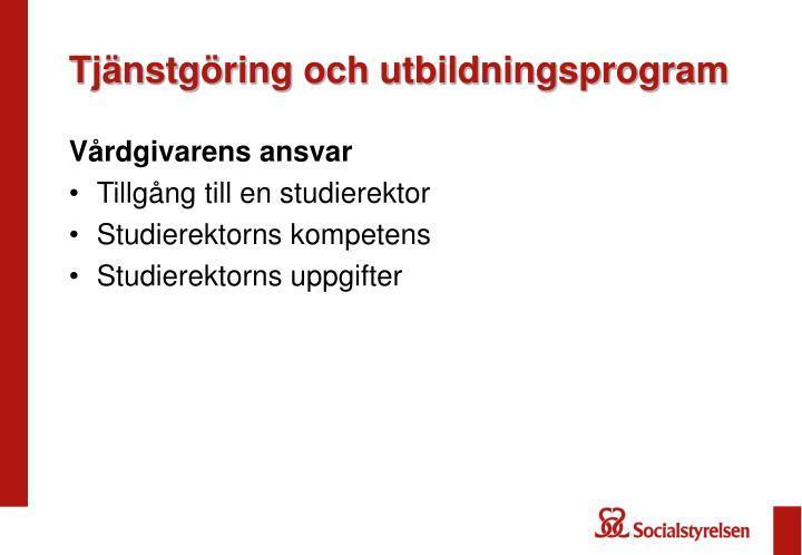 Tjänstgöring och utbildningsprogram
