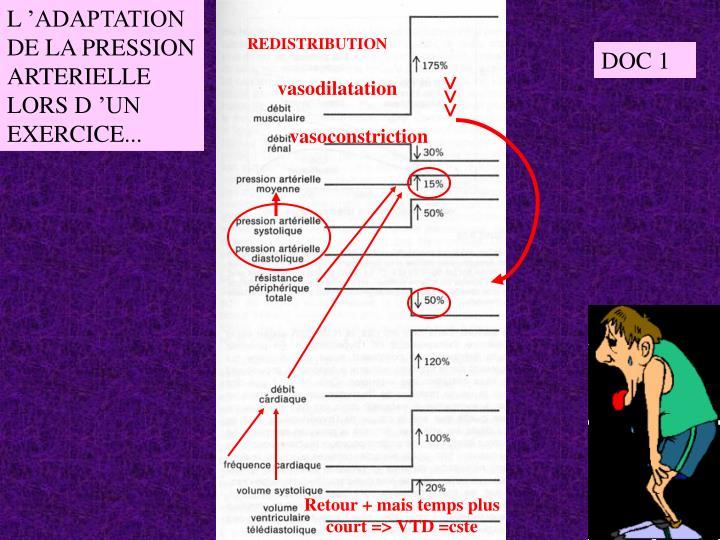 L'ADAPTATION DE LA PRESSION ARTERIELLE LORS D'UN EXERCICE...