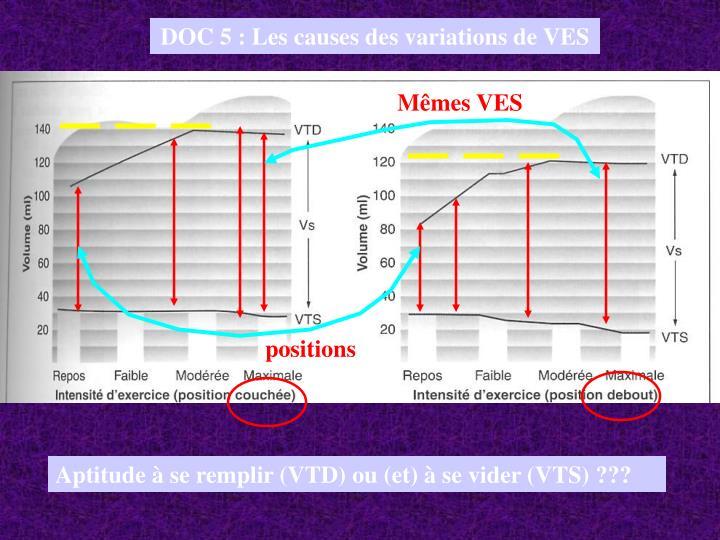 DOC 5 : Les causes des variations de VES