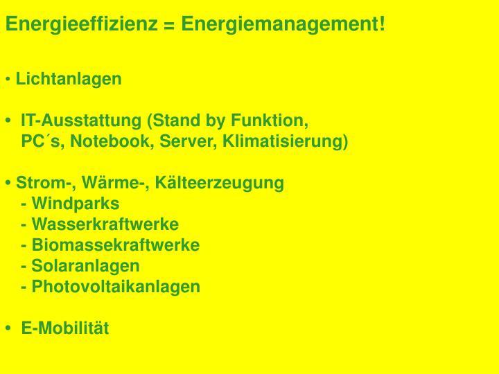 Energieeffizienz = Energiemanagement!