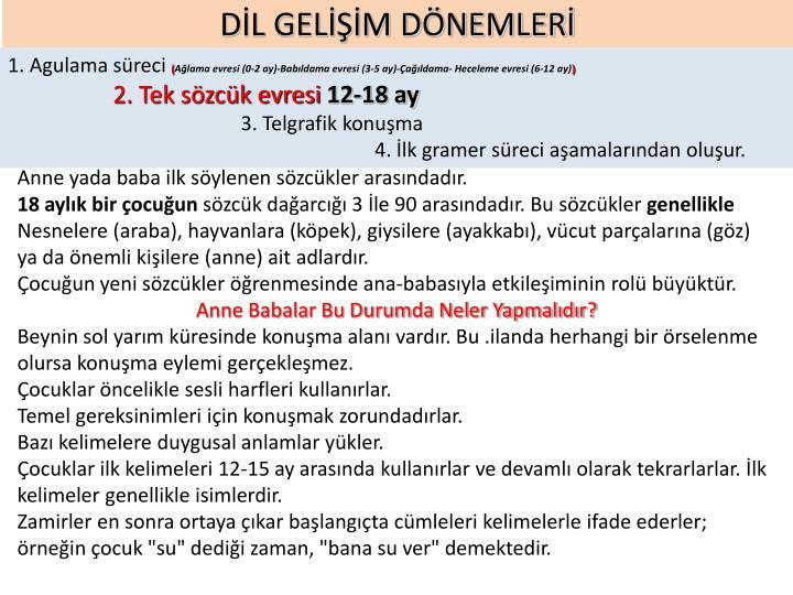 DİL GELİŞİM DÖNEMLERİ