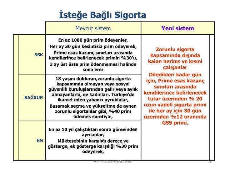 stee Bal Sigorta
