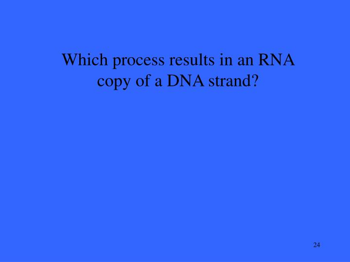 Which process results in an RNA copy of a DNA strand?