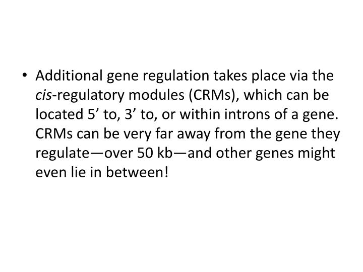 Additional gene regulation takes place via the