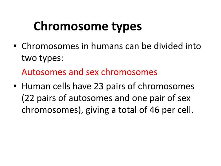 Chromosome types