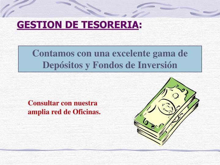 GESTION DE TESORERIA