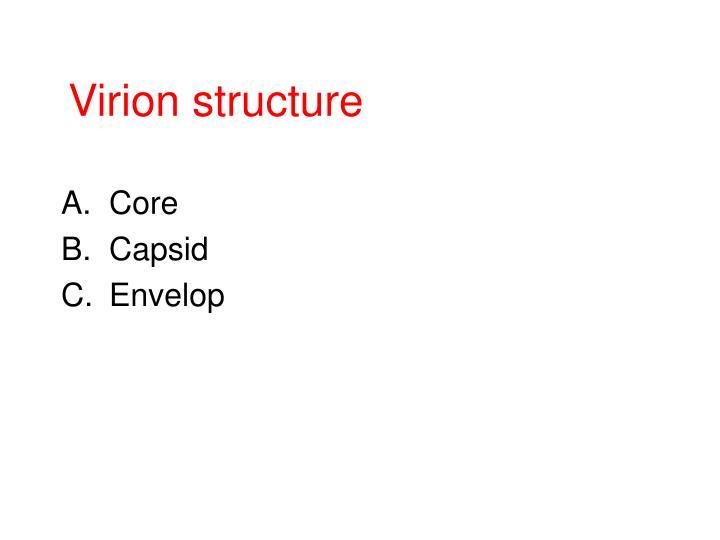 Virion structure