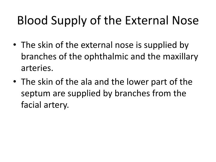 Blood Supply of the External Nose