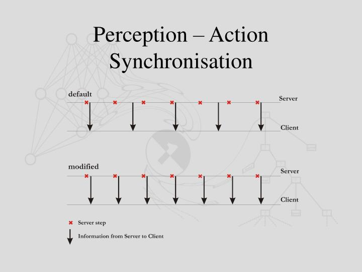 Perception – Action Synchronisation