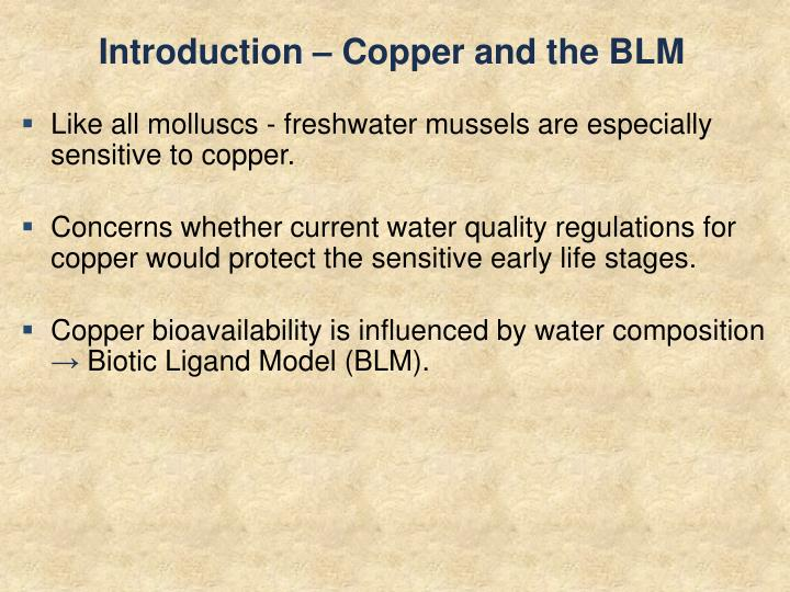 Introduction – Copper and the BLM