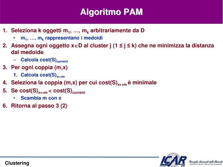 Algoritmo PAM