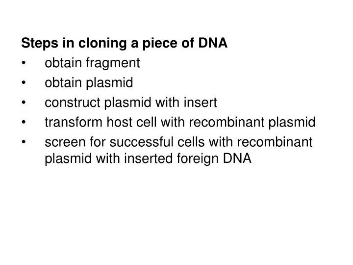 Steps in cloning a piece of DNA