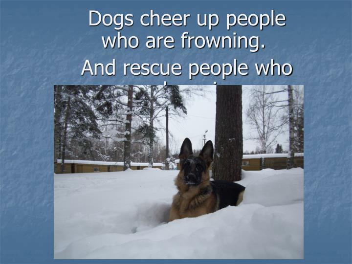 Dogs cheer up people who are frowning.