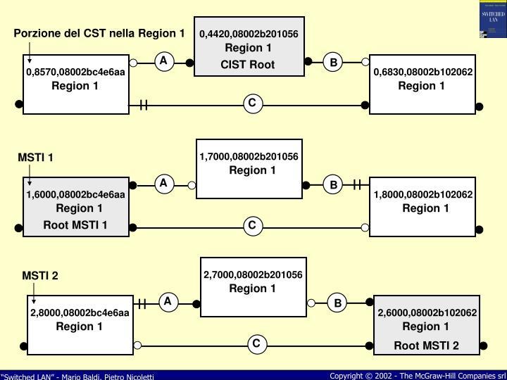 Porzione del CST nella Region 1