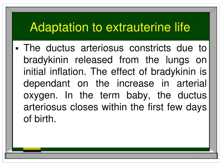 Adaptation to extrauterine life