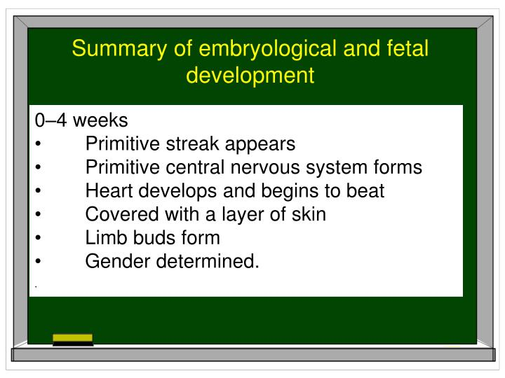 Summary of embryological and fetal development
