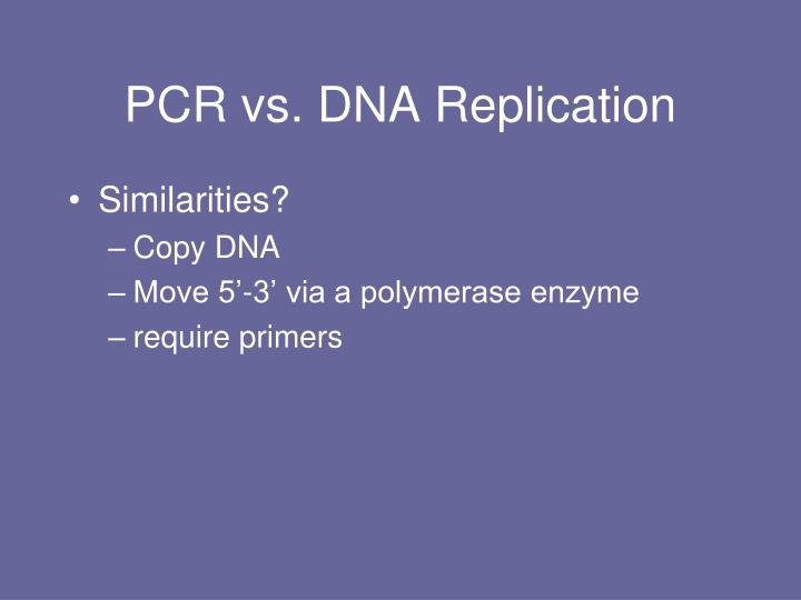 PCR vs. DNA Replication