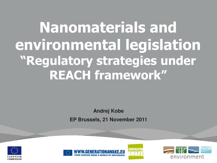 Nanomaterials and environmental legislation regulatory strategies under reach framework