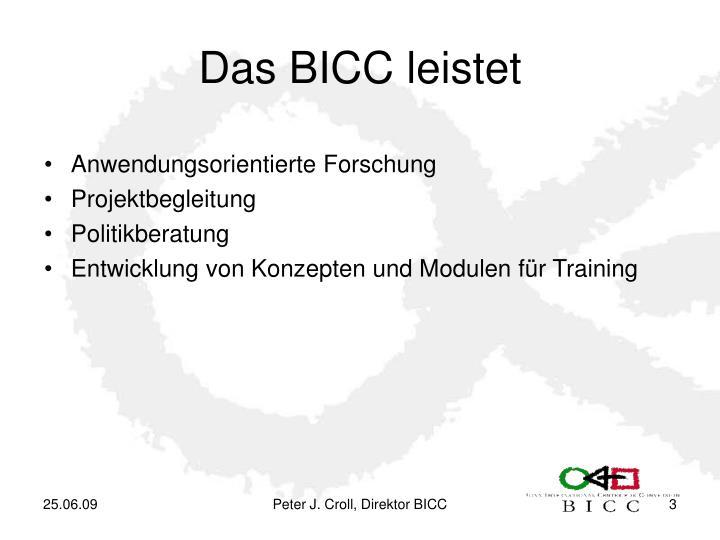 Das BICC leistet