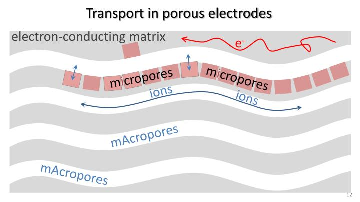 Transport in porous electrodes