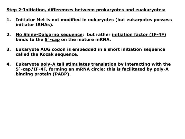 Step 2-Initiation, differences between prokaryotes and euakaryotes: